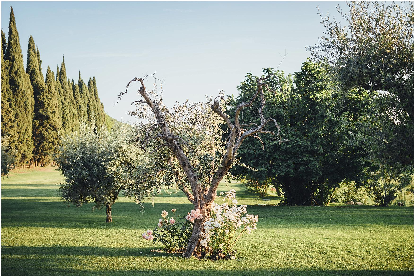 matrimonio a villa cordevigo_1134